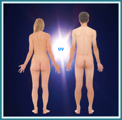 Bild: Mann und Frau unbekleidet Rückansicht vor blauem Licht